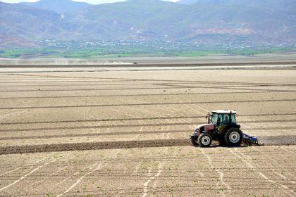 Tarım-ÜFE Mart'ta arttı