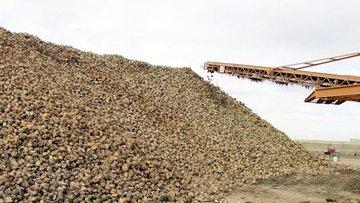 Erzincan ve Erzurum şeker fabrikalarının özelleştirilmesi...