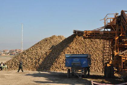 Afyon Şeker Fabrikası'na en yüksek teklifi Doğu...