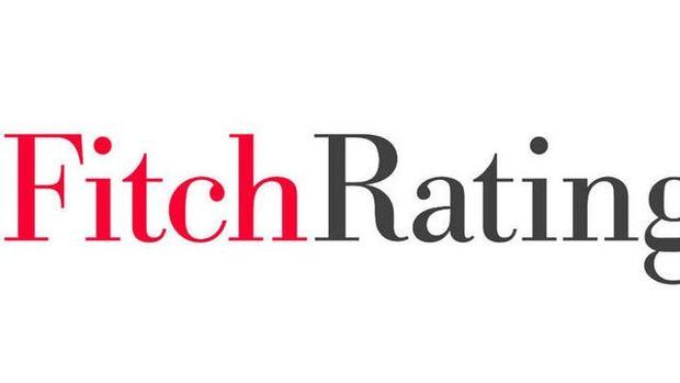 Fitch: TL'deki düşüş döviz borçlu şirketlere baskı oluşturuyor