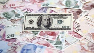 Doların TL karşısındaki günlük kaybı yüzde 2'yi aştı