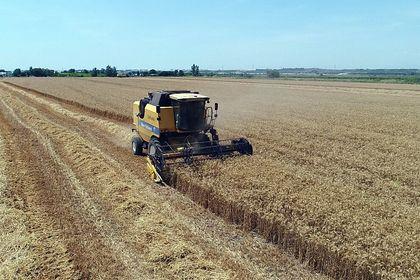 UHK'den uyarı: Buğday ekim alanları azalıyor