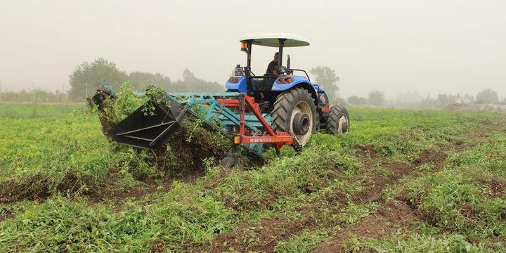 Tarım ÜFE mayısta azaldı