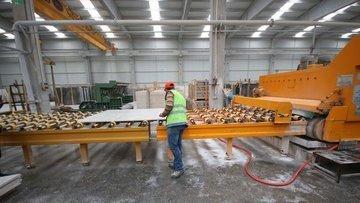 Üretim yatırımlarına proje bazlı devlet yardımı
