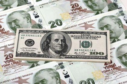 Dolar/TL kabine sonrası sert dalgalandı