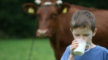 Süt üreticisinin beklentisi en az 2 TL