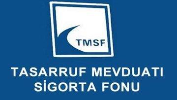 TMSF ve TCMB Cumhurbaşkanlığı ilgili kurumu oldu