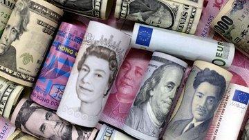 Gelişen ve gelişmiş piyasa paralarının volatilite farkı 7...
