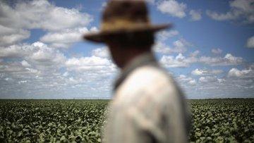 Dünyanın en büyük 35 et ve süt şirketi iklimi tehdit ediyor
