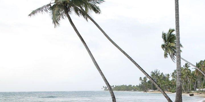 Irma kasırgası 8 can aldı